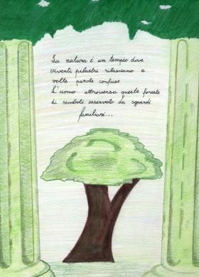 Sinestesia - Sabrina Marazzi Psicologo Milano